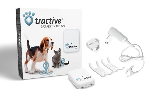 tractive gps dog tracker review